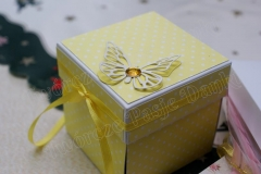 Box-Gosia