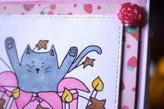 Kot w torcie