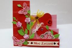Moc-zyczen-05-pasje-Danki
