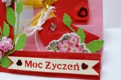 Moc-zyczen-06-pasje-Danki