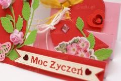 Moc-zyczen-09-pasje-Danki