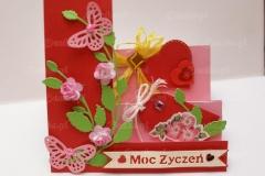 Moc-zyczen-10-pasje-Danki