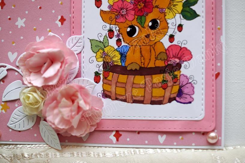 Kotek-Pink